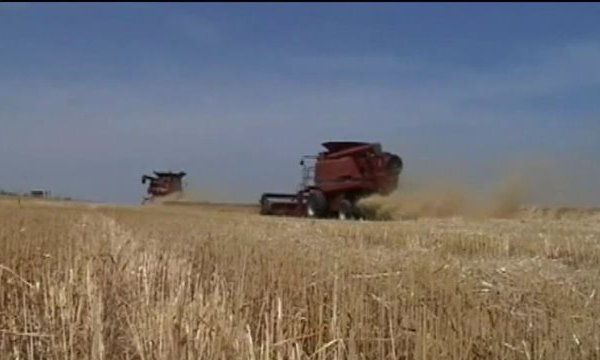 Valley Farmers Switching Up Crops due to Climate Change