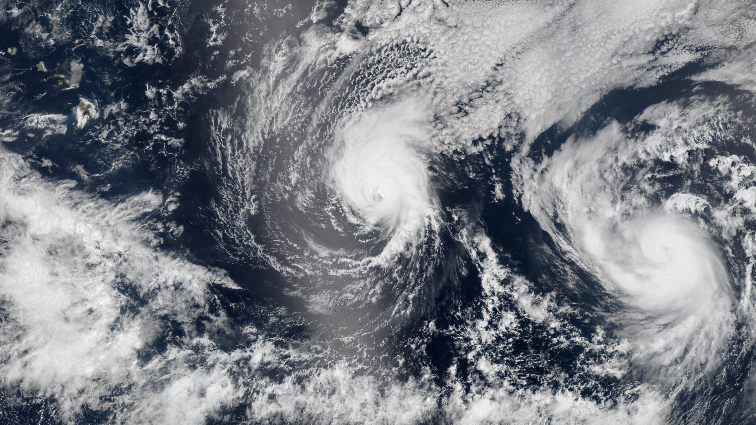 Hawaii / Iselle & Julio