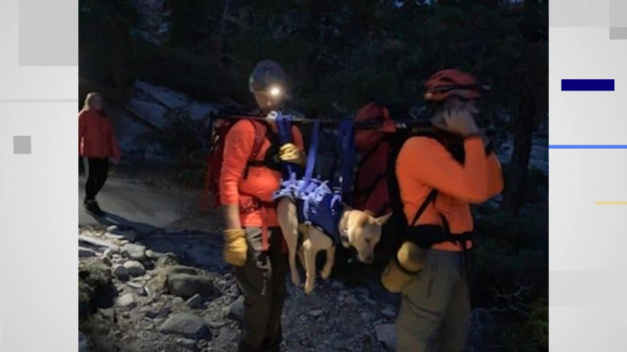 Hiker, K-9 rescued after getting stranded in Desolation Wilderness